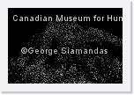 N-13-7350-54-L-M-BW-Canadian-Museum-for-Human-Rights * 4288 x 2848 * (2.48MB)