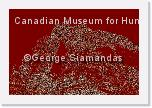N-13-7350-54-L-M-T-Canadian-Museum-for-Human-Rights * 4288 x 2848 * (4.18MB)